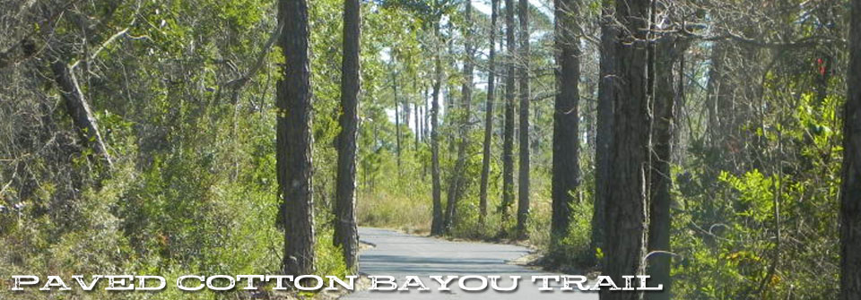 cotton-bayou-2