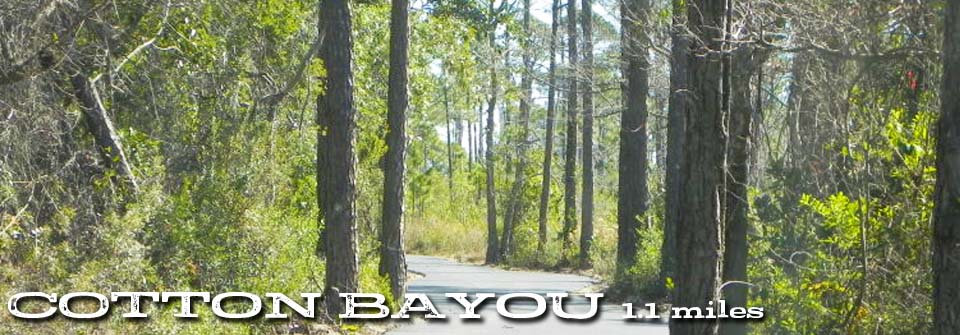 cotton-bayou